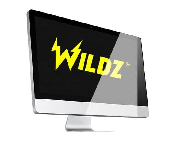 Logo Wildz Casino