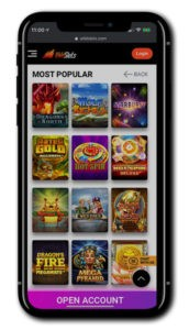 Wild Slots Casino Mobile screenshot