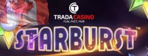 trada starburst canada